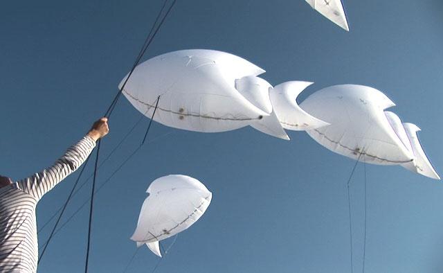 aerosculpture-Piscilux-manip-jour