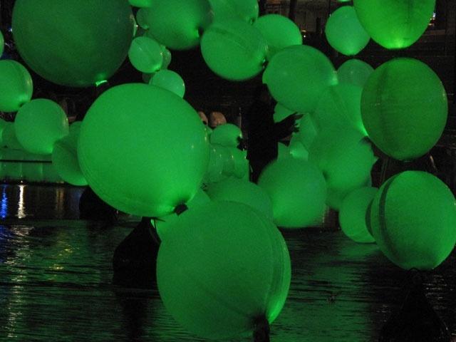 algues1