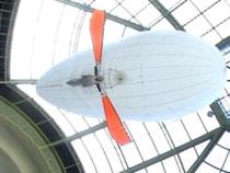 Aéroplume Bornéo, Grand Palais, 10-2005