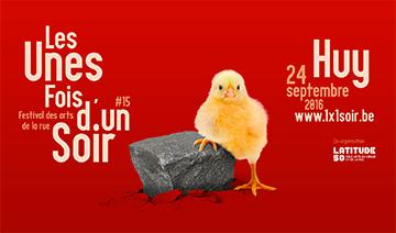 aerosculpture_banc_de_sardines_huy_360