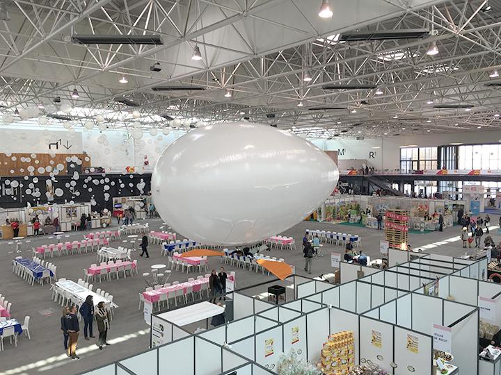 aerosculpture-aeroplume-fenonormandie2019-IMG_0597