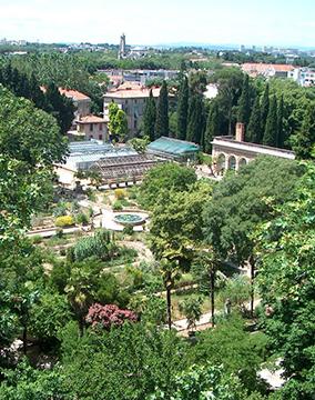 aerosculpture-jardin_des_plantes_Montpellier